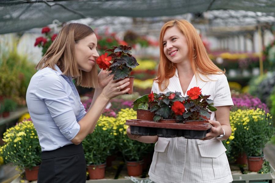 vendita-fiori-online